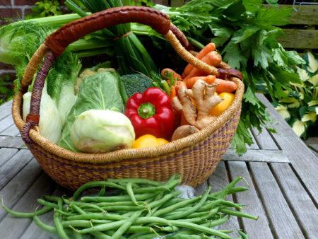 Das ist der Gemüsekorb der Woche