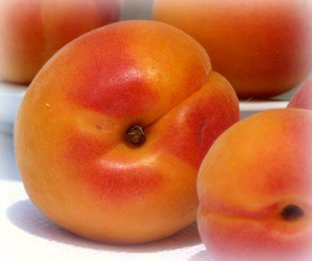 Aprikosen im AIP