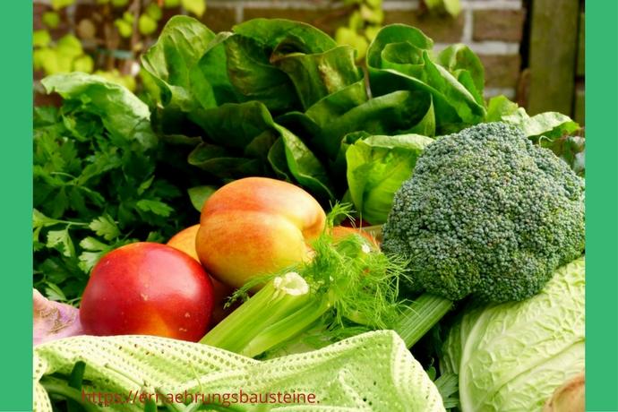 Saisonale Gemüsevielfalt im August