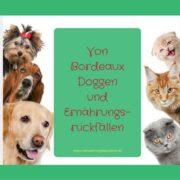 Von Bordeauxdoggen und Ernährungsrückfällen