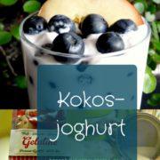 Kokosjoghurt Rezept